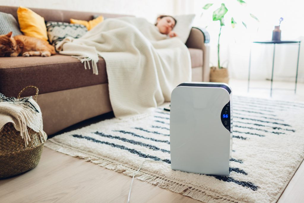 Humidifier in Vancouver Home